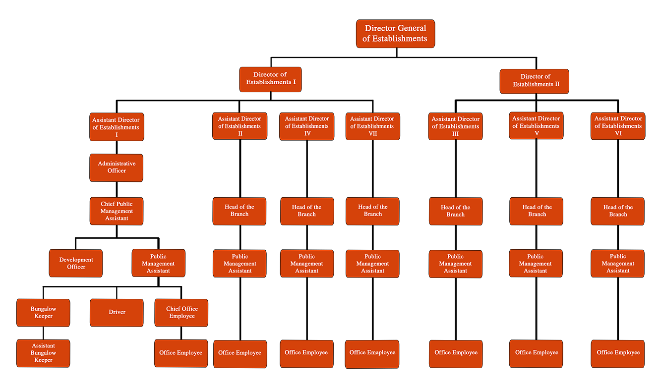 Organizational Structure Establishments Division English